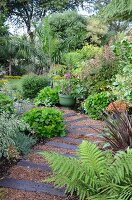 Garden path made from gravel & old railway sleepers in densely planted garden