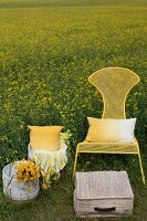 Wicker baskets, flowers and cushions next to yellow metal chairs in field of flowering rapeseed