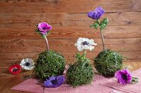Anemones arranged in balls artistically made from bilberry stems