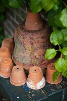Decorative arrangement of terracotta pots in garden