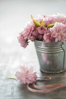 Zinc bucket of Japanese cherry blossom