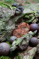 Copper wire balls and ornamental spheres on tree trunk