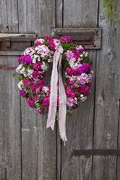 Wreath of pink Sweet Williams hung on rustic board door