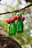 Green glass bottles and cherries hanging from branch
