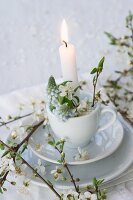 Lit candle in teacup decorated with grape hyacinths and branches of blackthorn blossom
