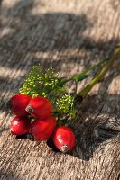 Rose hips on wooden background