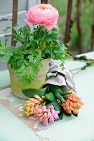 Pink ranunculus in yellow-painted terracotta pot and hyacinths on vintage surface
