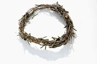 Basic wreath made from olive branches