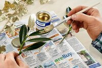Gilding bay leaves