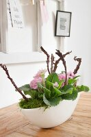 Arrangement of pink primulas and moss in white bowl on wooden table