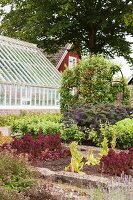 Vegetable beds and greenhouse in garden with Swedish house in background