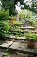 Potted plants on vintage stone steps in garden
