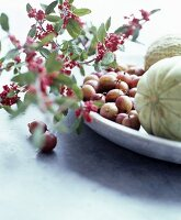 Sprig of red berries, gooseberries and melons on dish