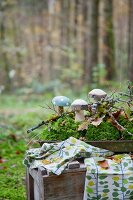 Wooden toadstools and moss on tray on old wooden crate in woods