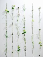 White wall decorated with different flowers