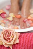 Woman bathing her feet in rose petal water