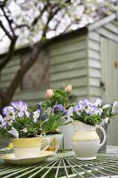 Spring flowers in pots on garden table