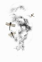 Dragonflies and clouds (print)