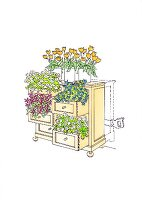Illustration: Flowers planted in a chest of drawers