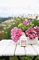 Small, white-painted lantern in front of bowl of pink hydrangeas on garden table