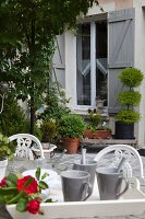 Beakers on wooden tray in planted courtyard of country house with grey shutters