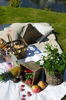 Picnic on lawn with fruit and potted wild strawberry