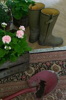 Soil on spade and wooden crate of flowering geraniums on rug next to Wellington boots