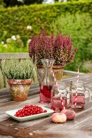 Drinks and redcurrants in front of potted heather on garden table