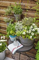 Scented herbs in a zinc tub and hanging flowerpots on a terrace