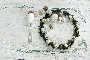Easter wreath made from box leaves and quail eggs and goose's egg on antique silver spoon on rustic wooden surface