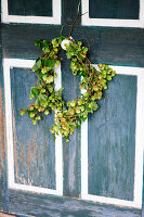 Wreath of hops on wooden door