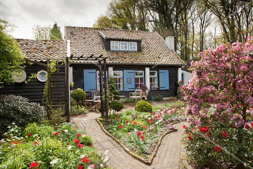 Spring garden in The Netherlands