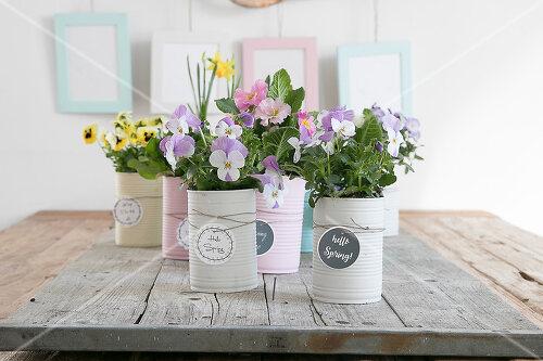 Pastellfarbene Pflanztöpfchen für Frühlingsblumen aus alten Konservendosen