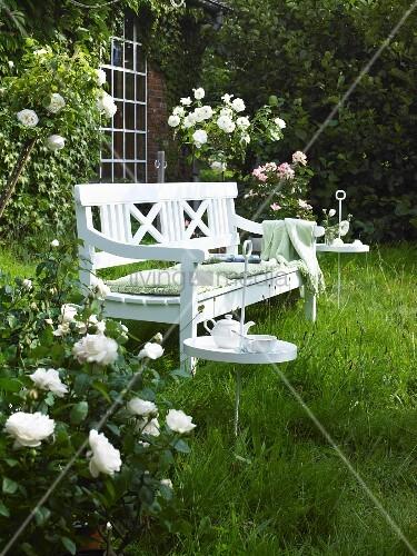wei e gartenbank zwischen bl henden rosen bild kaufen. Black Bedroom Furniture Sets. Home Design Ideas
