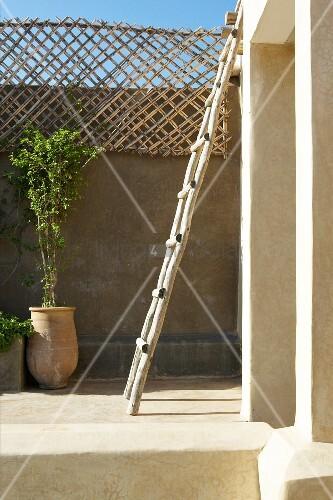 Rustikale leiter an wand lehnend und pflanzent pfe auf for Innendesigner schweiz