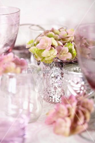 rosa hortensien im silberbecher und leere weingl ser bild kaufen living4media. Black Bedroom Furniture Sets. Home Design Ideas
