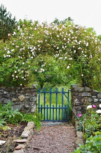 romantischer cottagegarten mit rosenbogen ber. Black Bedroom Furniture Sets. Home Design Ideas