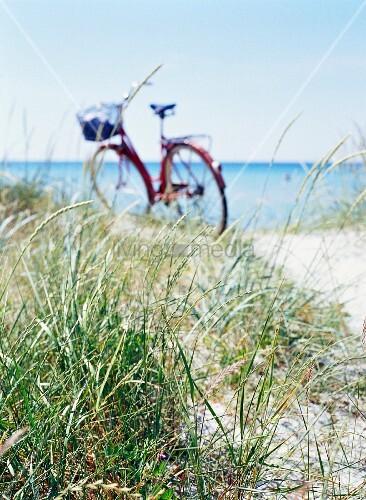 ein fahrrad zwischen den d nen am strand bild kaufen living4media. Black Bedroom Furniture Sets. Home Design Ideas