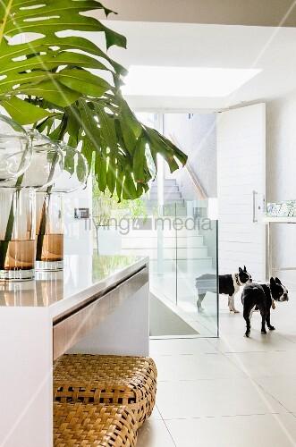 Eingangsbereich mit offener Haustür und Blick auf eine breite ...