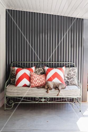 hund auf sitzbank mit polstern und kissen vor metallwand. Black Bedroom Furniture Sets. Home Design Ideas