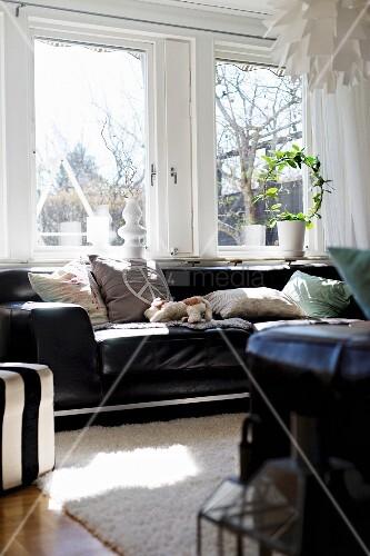 schwarzes ledersofa mit hellen kissen vor dem fenster. Black Bedroom Furniture Sets. Home Design Ideas