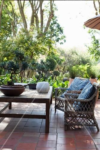 rattanst hle und holztisch mit bonsai auf terracotta terrasse und garten im hintergrund bild. Black Bedroom Furniture Sets. Home Design Ideas