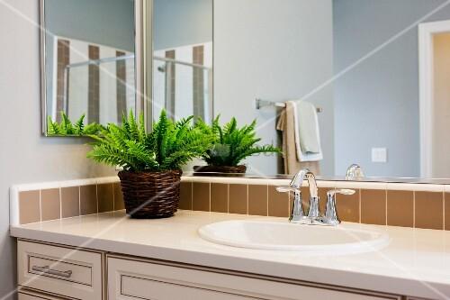 waschtisch vor spiegelwand mit gr npflanze dekoriert. Black Bedroom Furniture Sets. Home Design Ideas