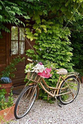 vintage fahrrad mit blumen im korb auf kiesweg vor beranktem eingang bild kaufen living4media. Black Bedroom Furniture Sets. Home Design Ideas