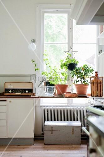 arbeitsplatte vor fenster mit blument pfen in der k che bild kaufen living4media. Black Bedroom Furniture Sets. Home Design Ideas