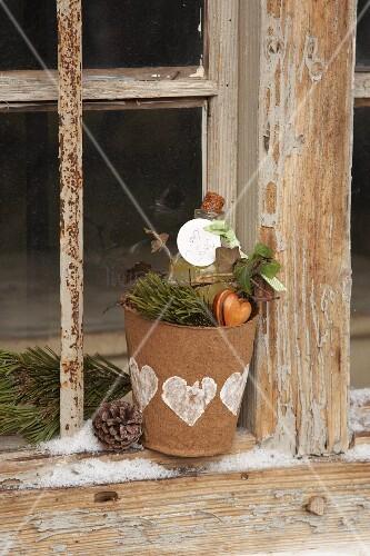 pflanztopf aus pappe mit einer flasche als geschenk bild kaufen living4media. Black Bedroom Furniture Sets. Home Design Ideas