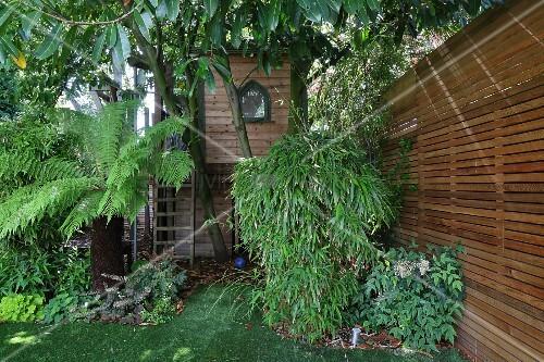 Garten mit palme und bambus vor outdoor spielhaus bild kaufen living4media - Garten mit bambus ...