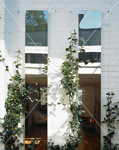 geweisselte ziegelfassade mit kletterpflanzen und blick durch schmale fenster in wohnraum bild. Black Bedroom Furniture Sets. Home Design Ideas