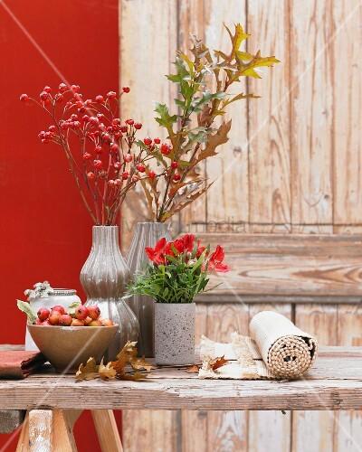 herbstliche tischdeko mit hagebutten bild kaufen living4media. Black Bedroom Furniture Sets. Home Design Ideas
