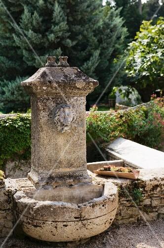 alter steinbrunnen mit wasserspeier in mediterranem garten. Black Bedroom Furniture Sets. Home Design Ideas